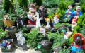 Ландшафтная компания Зеленая Жизнь (2)