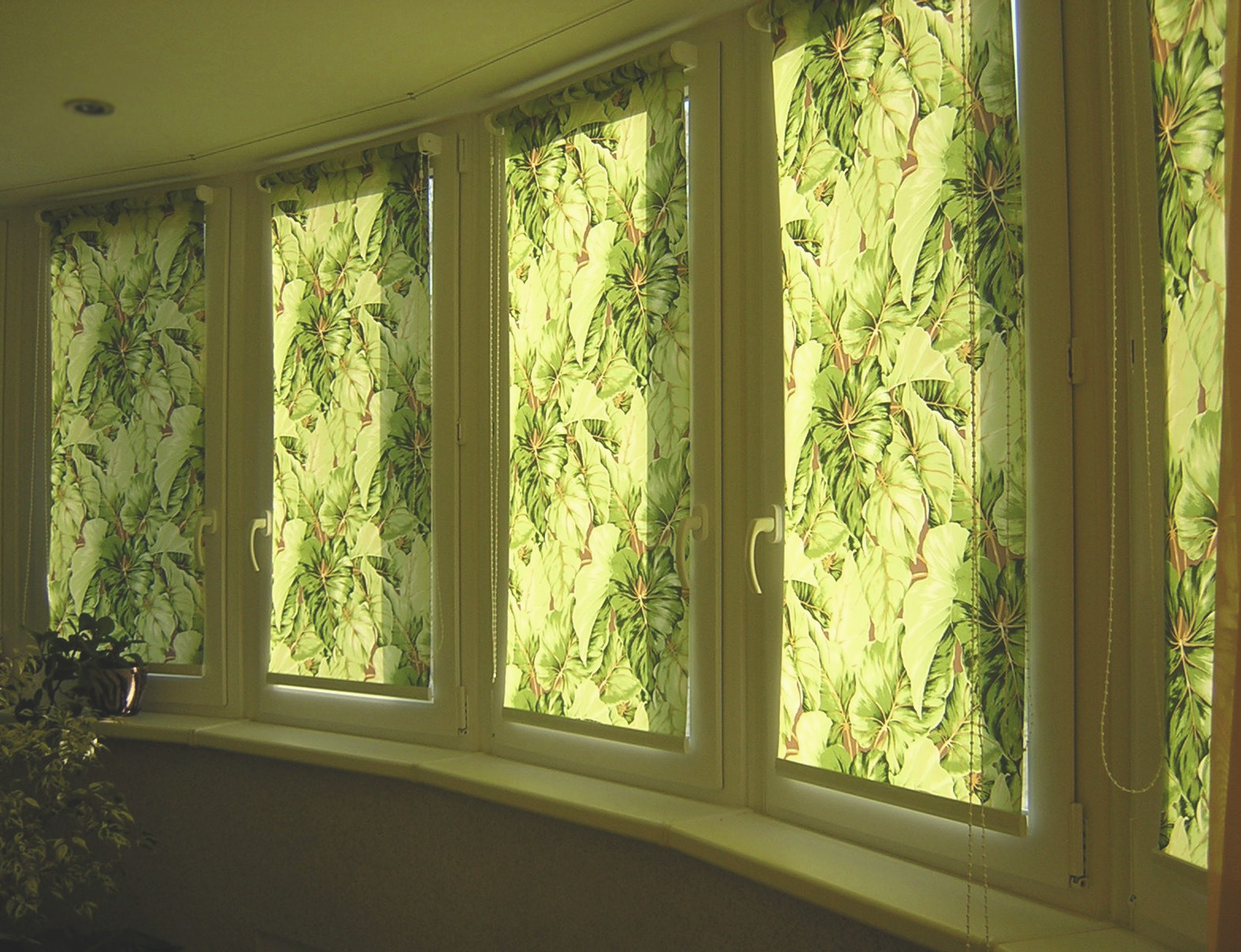 rollerblinds-photo-12