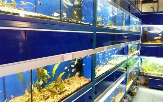 Зоомагазин Zoo Mag в Мелитополе (2)