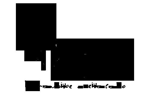 Рекламное агентство в Мелитополе