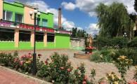 Райский уголок в Мелитополе (1)