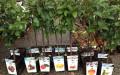 Садим - магазин садовода (1)