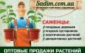 Садим - магазин садовода
