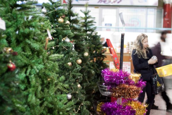 купить елку в мелитополе