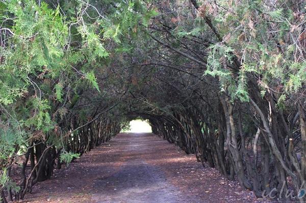 тоннель мелитополь