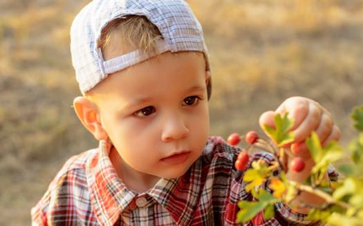 Алёна Царёва - детский и семейный фотограф в Мелитополе (4)