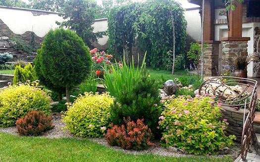Росток - садовый центр (4)