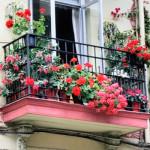 frantsuzskiy_balkon
