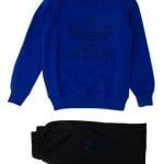 Спортивный костюм для мальчика Эмблема Adidas
