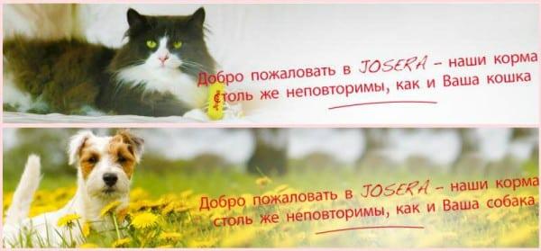 Зоогурман Мелитополь2
