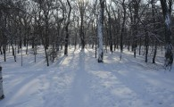 Мелитополь зимой-07