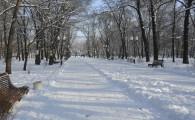 Мелитополь зимой-13
