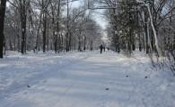 Мелитополь зимой-14