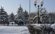 Мелитополь зимой-18