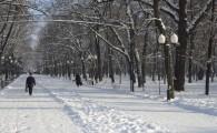Мелитополь зимой-19