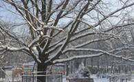 Мелитополь зимой-22