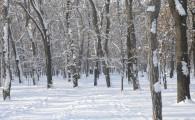Мелитополь зимой-27