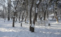 Мелитополь зимой-34